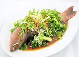 Steamed Coral Trout with Ginger and Shallot